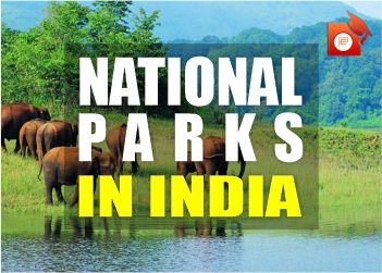 national park india pendulumedu