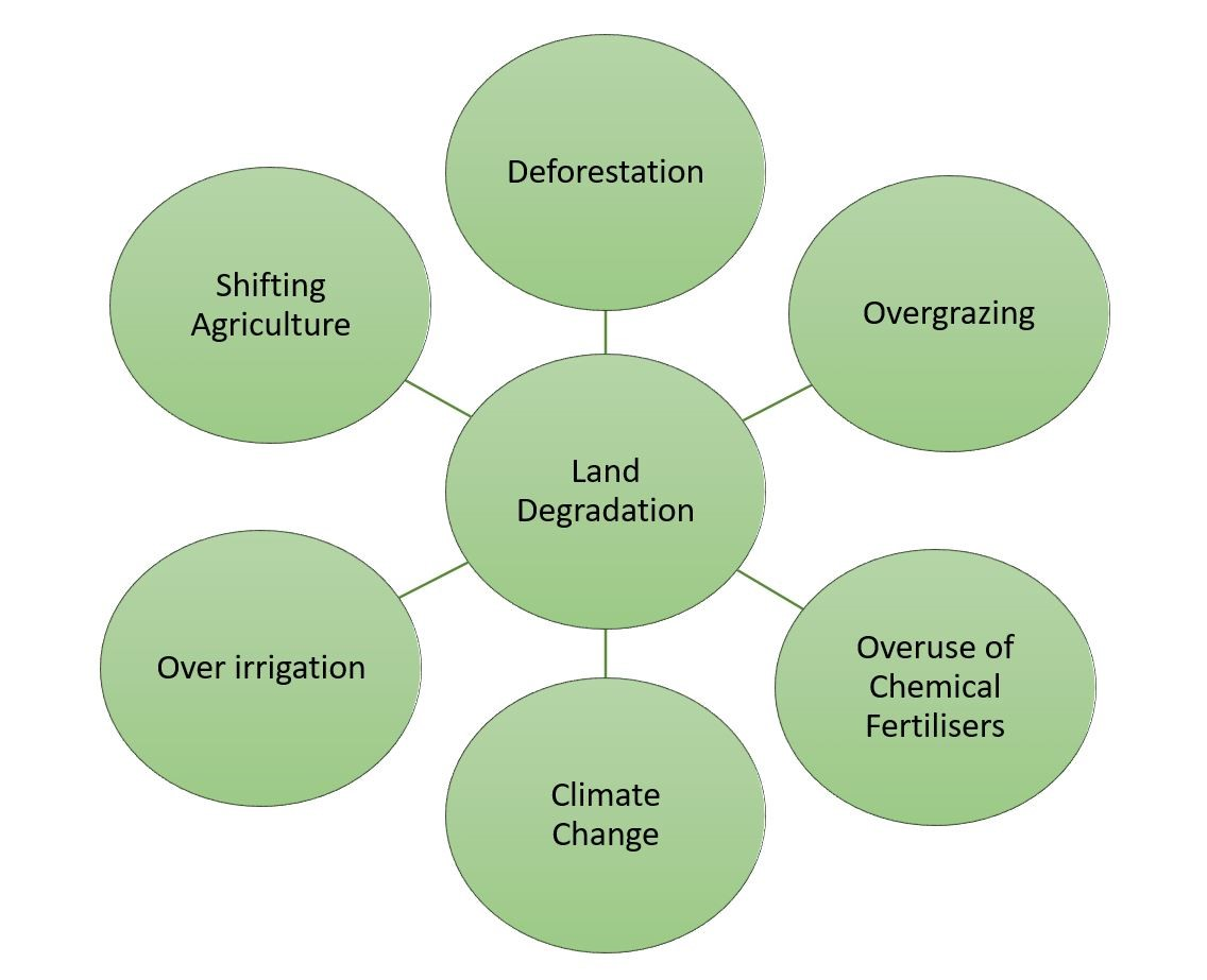 Causes of Land Degradation COP14